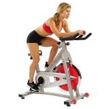 SF-B901 Pro Indoor Cycling Bike Review